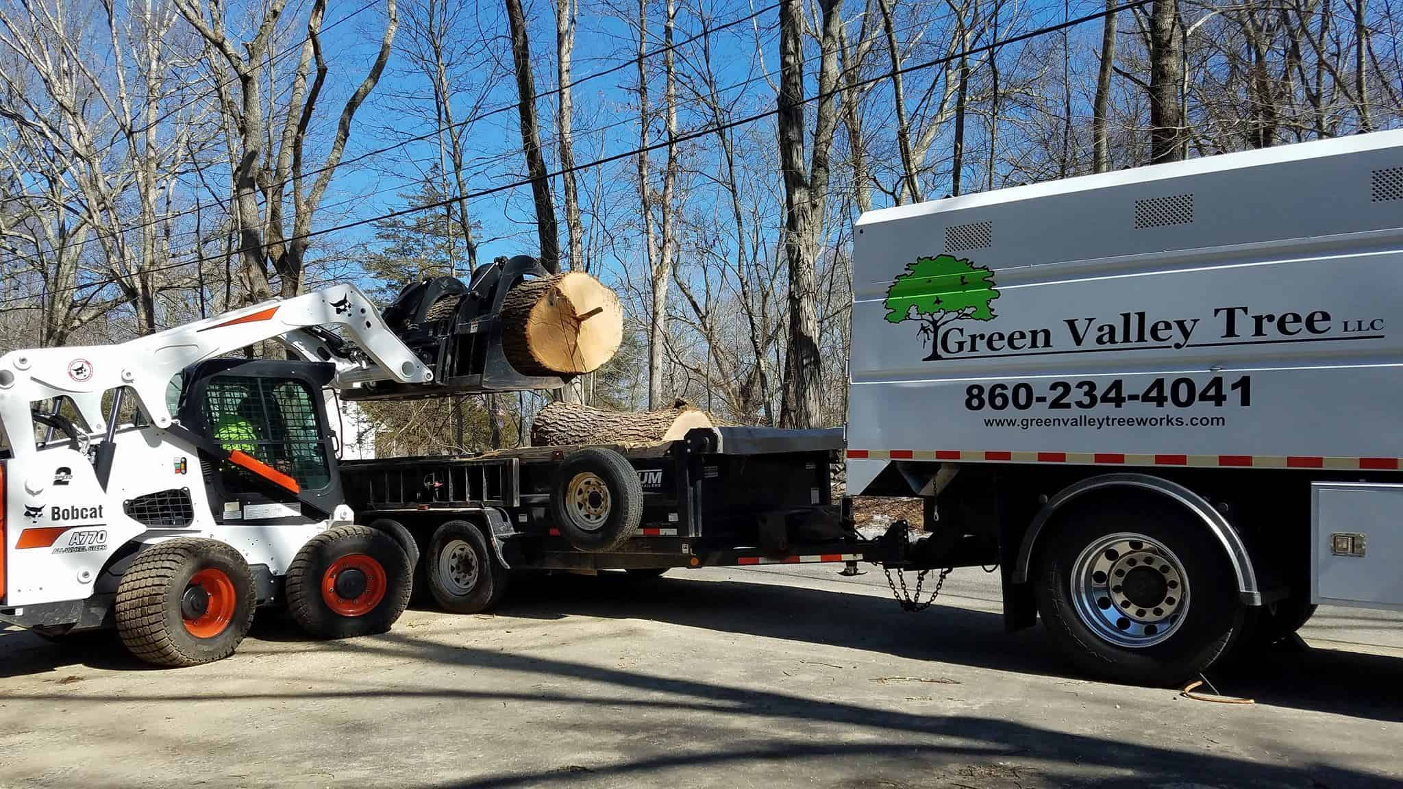 lot clearing ct